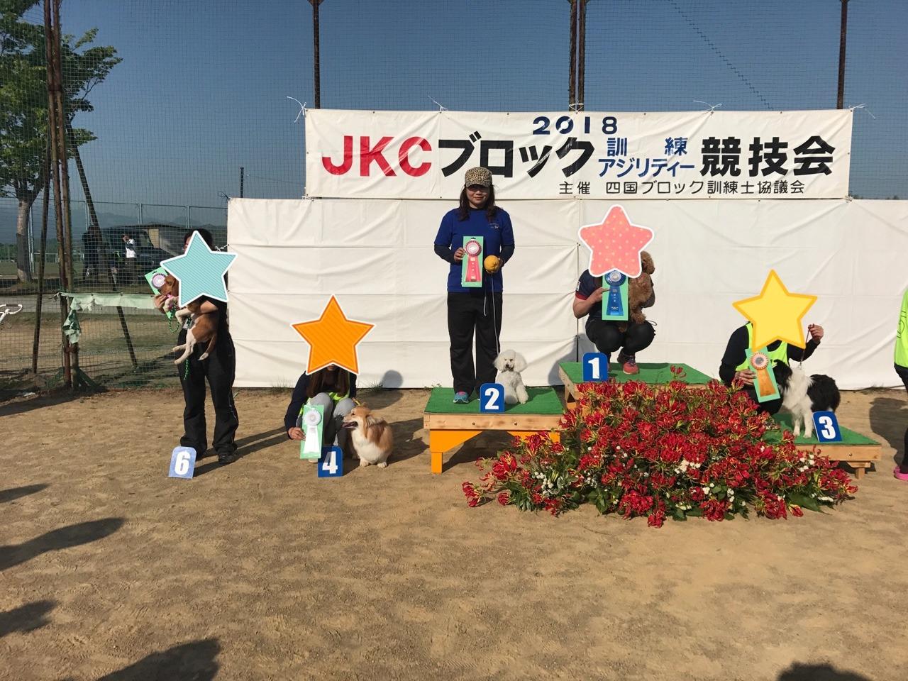 岡山でドッグショーです:イメージ